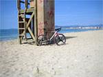 Mallorca Mar 09 (Cyclista)