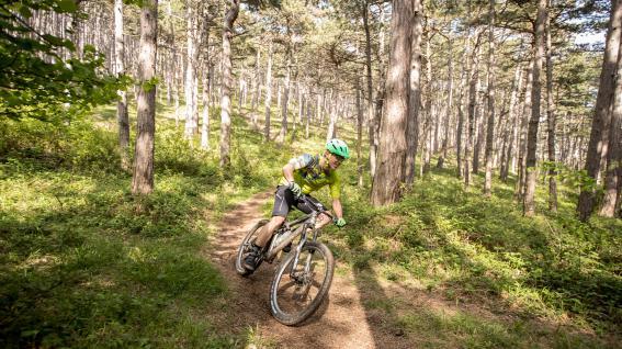 Endura-Zwirn für Trail und Tour
