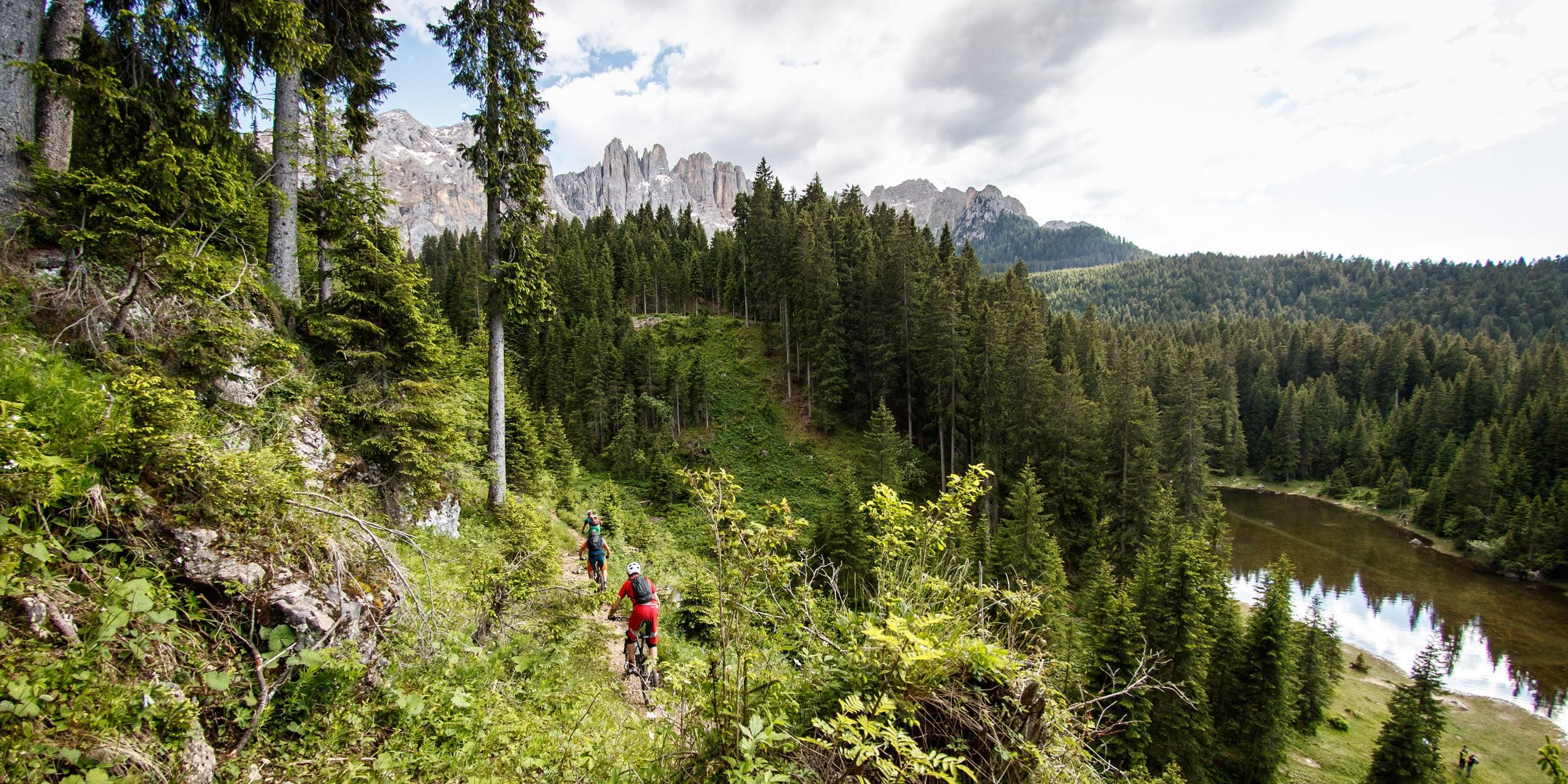 Singletrail-Paradies Latemar / Rosengarten in Südtirol