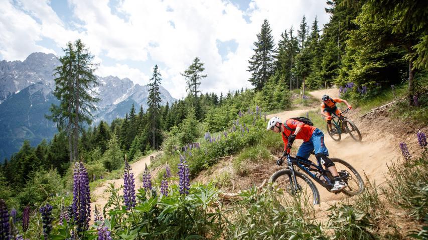 Peter Sagan Trail, Timmeltal und Klammljoch - Biken in OsttirolVon einsamen Hochtälern, angelegten Bikepark-Trails, herzhafter Küche und allgegenwärtigen 3.000ern. Osttirol zu erkunden, wird wohl niemals öde ...