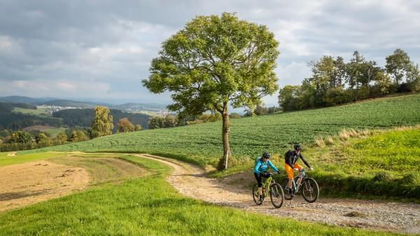 Herbst-Biken in und um Linz