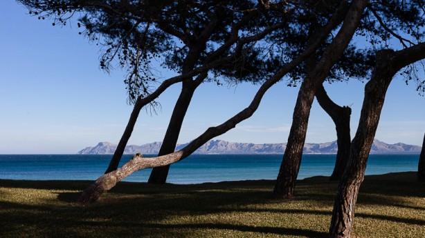 Bicycle Holidays Max HürzelerDie Rad-Destination Playa de Muro (Mallorca) im Bikeboard Check. So einfach kann Trainingslager sein. Inklusive dem Interview: Traumberuf Bikeguide