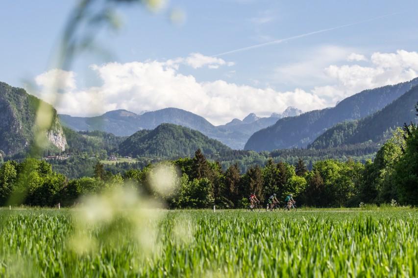 RENNRADREGION KLOPEINER SEEBöse Berge sehen anders aus. Nur einer der Gründe, warum sich Südkärnten besonders den Genießern und Familienmenschen unter den Rennradlern empfiehlt ...